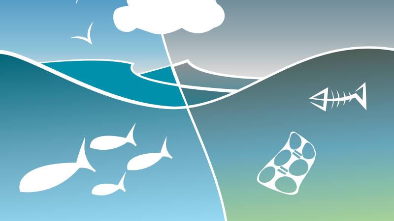 contaminación océano plásticos